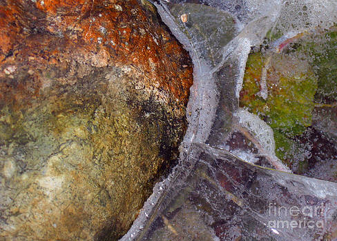 Ellen Miffitt - Abstract close up of frozen bird bath