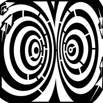 Abstract Distortion Scares the Bird Maze  by Yonatan Frimer Maze Artist