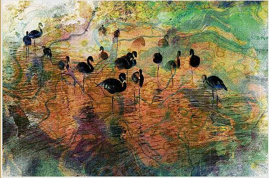 Abstract Flamingos by Kevin Moore