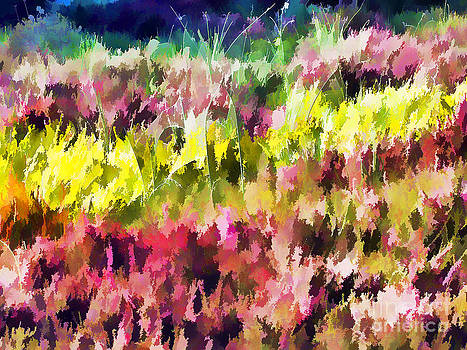 Anne Ferguson - Abstract Flower Garden
