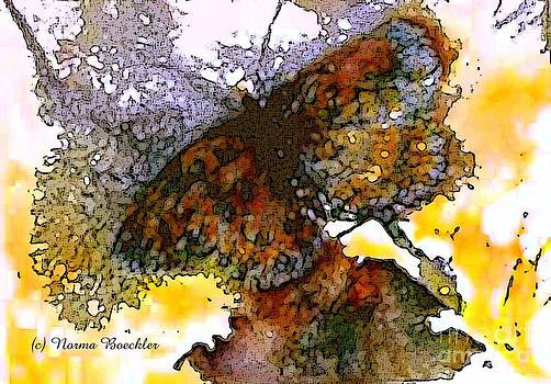 Abstract Monarch by Norma Boeckler
