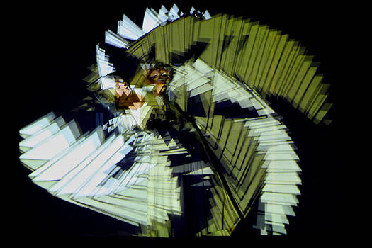 Venetia Featherstone-Witty - Fractal Abstract of a Dancer