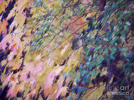 Abstract of Autumn by Steven Huszar