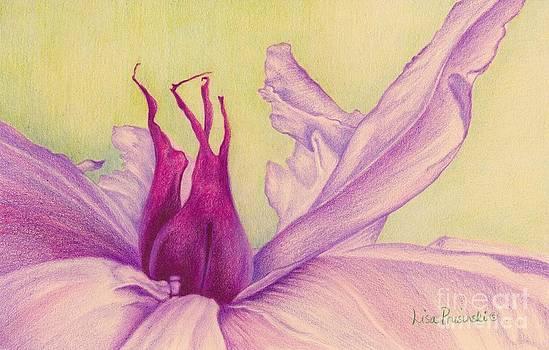 Abstract Peony by Lisa Prusinski