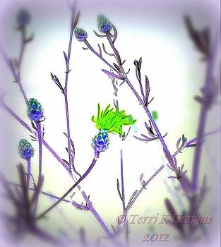 Abstract Plant by Terri K Designs