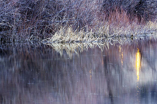 Abstract Reflections by Dana Moyer