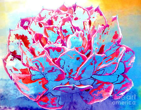 Abstract Suculent Flower by Arelys Jimenez