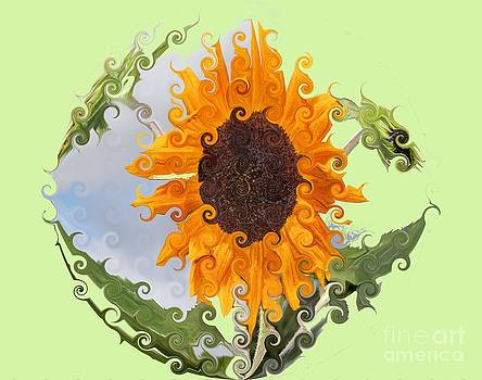 Abstract Sunflower by Annette Allman
