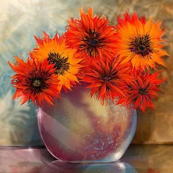 Abundance by Mary Eichert