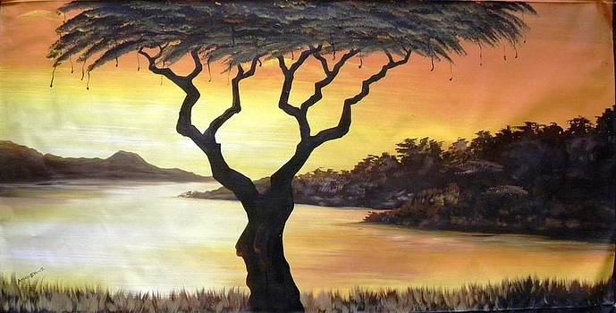 Acacia Tree by the Nile by Angelo