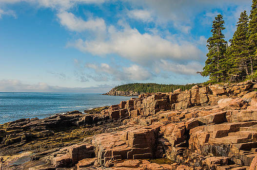 Acadia Shoreline by Thomas Lavoie