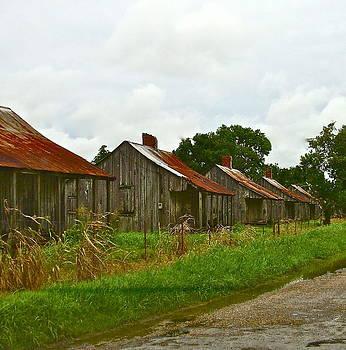 Acadian Village by Dana Doyle
