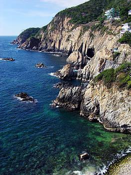Ramunas Bruzas - Acapulco Coastline