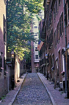 Acorn Street Boston by Gail Maloney