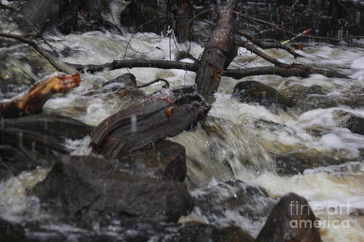 Acushnet River Waterfall by Spirit Baker