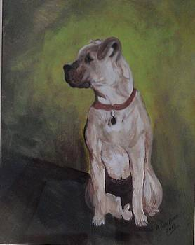 Adams Dog by Marcia Crispino