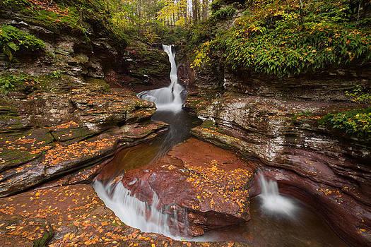 Adams Falls in Autumn by Tim Devine