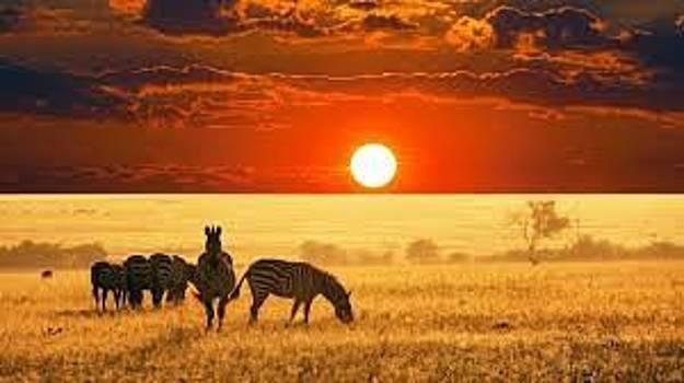 Adeyemi Fawole- Beautiful view of Sunset by ADEYEMI FAWOLE Hamilton Adeyemi Fawole NZ