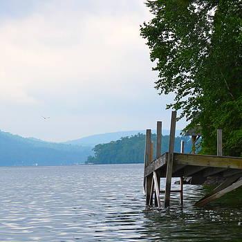 Adirondack Swim by Paul Schoenig