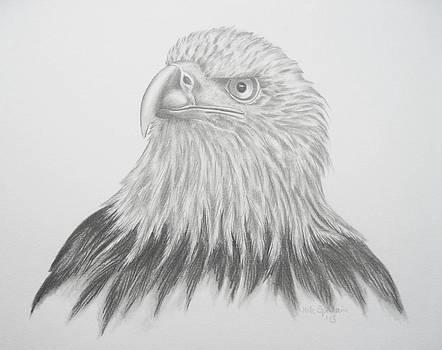 Adler by Haike Espenhain