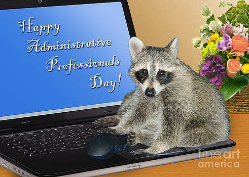 Jeanette K - Admin Professionals Day Raccoon