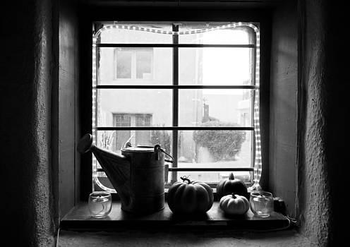 Robert Meyers-Lussier - Adobe Window Autumn Still Life