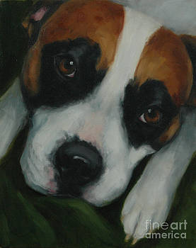 Adoring Pitbull by Pet Whimsy  Portraits
