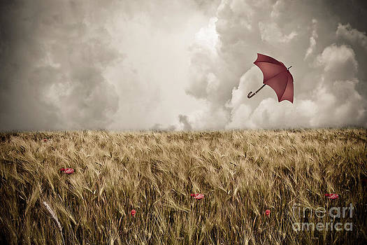 Adrift by Stacey Granger