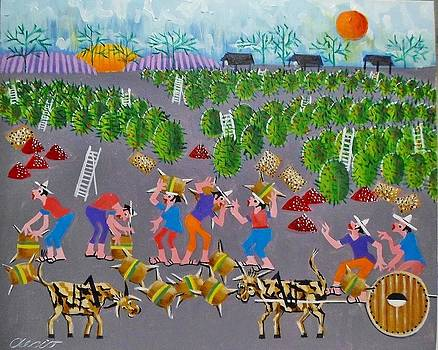Aecio Tema Fazenda E Carros De Bois  by Naifjunior Naifjunior