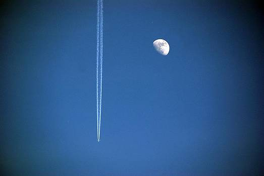 Aereo e Luna by Niki Mastromonaco