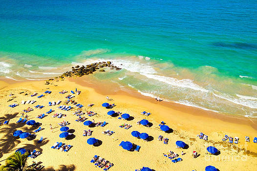 Aerial Beach View Puerto Rico by Christy Woodrow