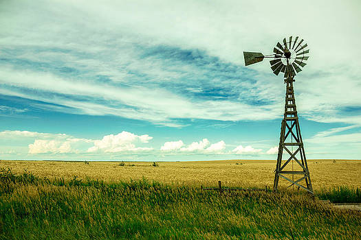 Aeromotor Field by Joseph Mills
