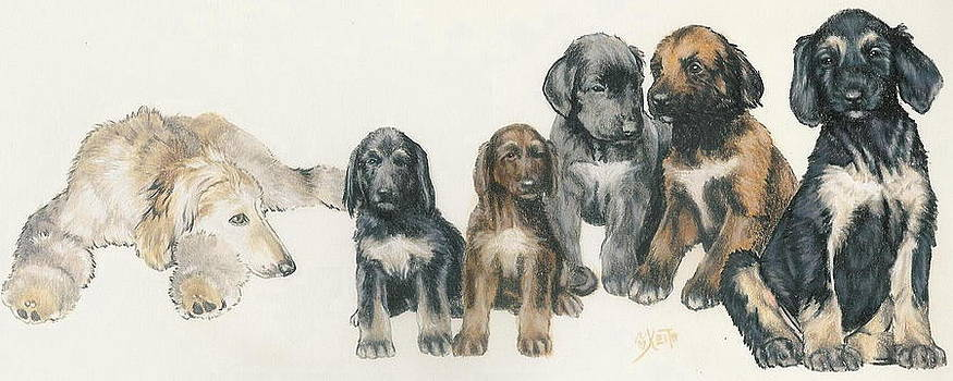 Barbara Keith - Afghan Hound Puppies
