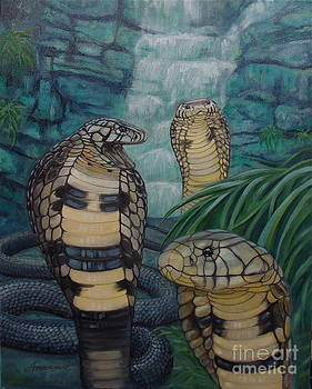 African Black Forest Cobras by Sherri Anderson