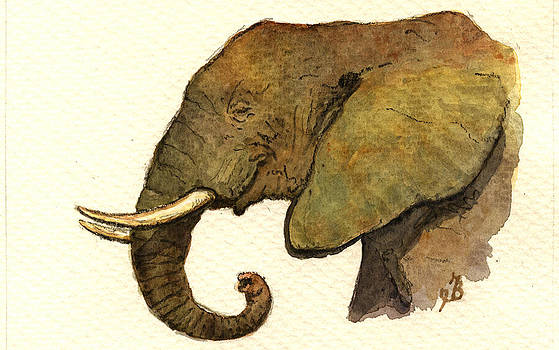 Juan  Bosco - African elephant head