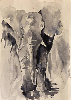 African Elephant by Rina Bhabra