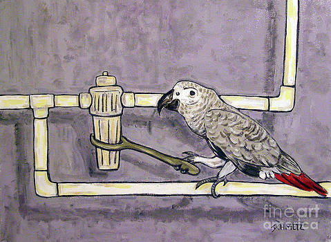 African Grey Parrot Plumber by Jay  Schmetz