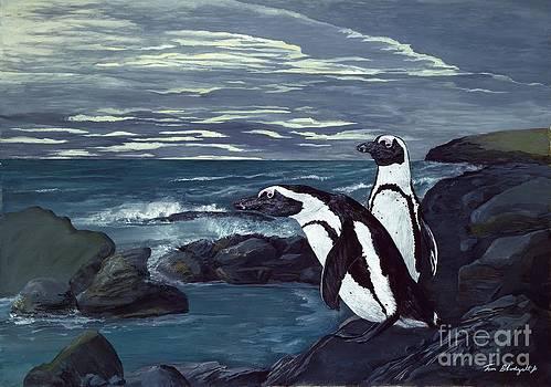 African Penguin by Tom Blodgett Jr