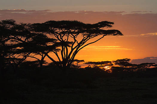 African sunset by Christa Niederer