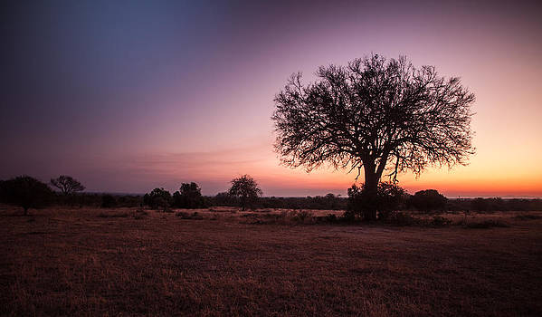 African Sunset by Craig Brown