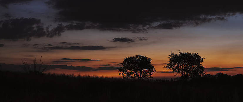 African Sunset by Leon James