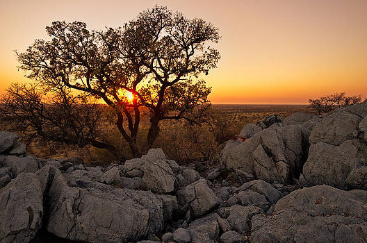 Paul W Sharpe Aka Wizard of Wonders - African Sunset Over the Etosha Plains