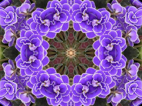 African Violet Mandala by Diane Lynn Hix