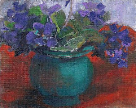African Violet by Terri Messinger