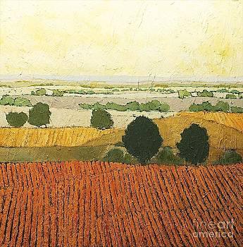 After Harvest by Allan P Friedlander