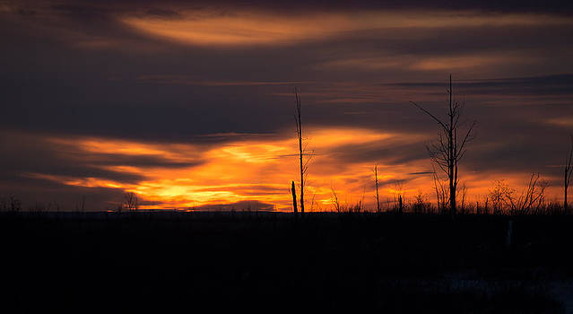 After Sunset by Emily Henriques