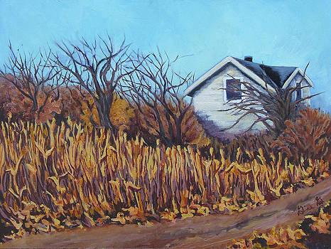 Gina Grundemann - After the Harvest