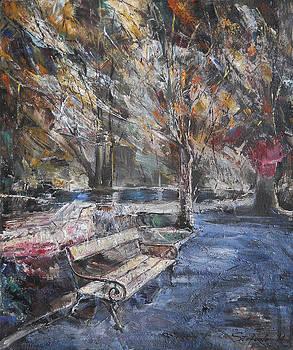 After the Rain by Stefano Popovski
