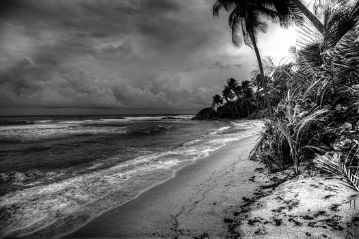 After The Storm by Alfredo Machado