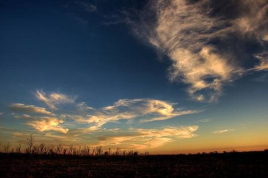 Afternoon Clouds by Shane Dickeson